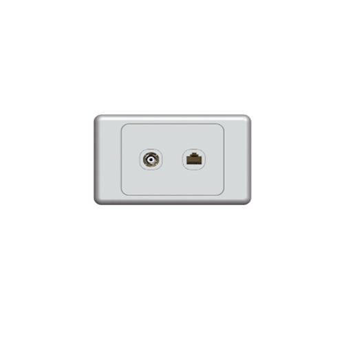 Wall Plate with PAL and Telephone Socket