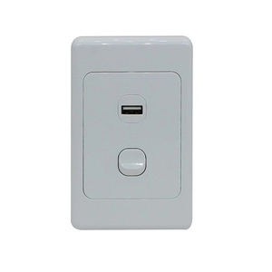 Vertical Single Gang Wall Plate Switch with 2.1A USB Socket Charger